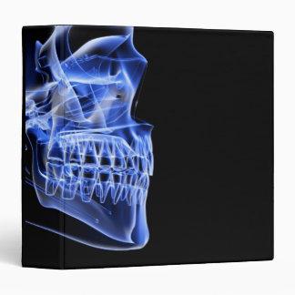 Bones of the Jaw 3 Ring Binder