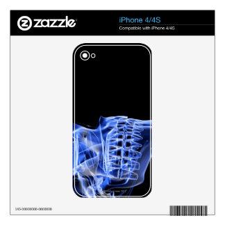 Bones of the Jaw iPhone 4 Skin