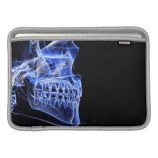 Bones of the Jaw MacBook Sleeves