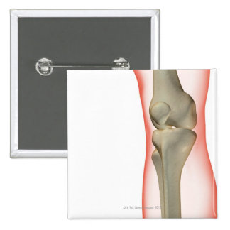 Bones of the Knee 2 Button