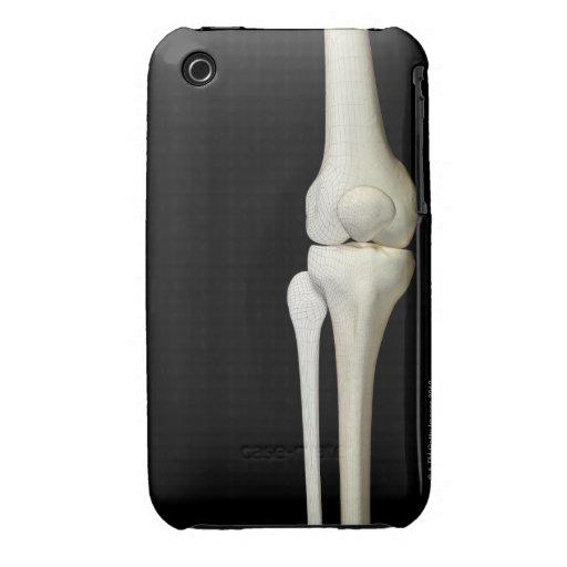 Bones of the Knee 4 Case-Mate iPhone 3 Cases