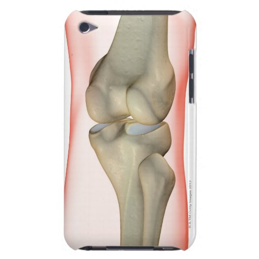 Bones of the Knee iPod Case-Mate Cases