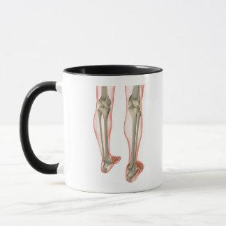 Bones of the Leg 3 Mug