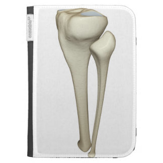 Bones of the Leg 4 Kindle Case
