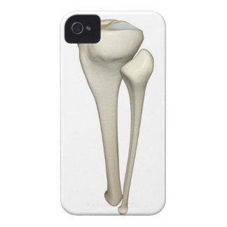 Bones of the Leg 4 Case-Mate iPhone 4 Cases
