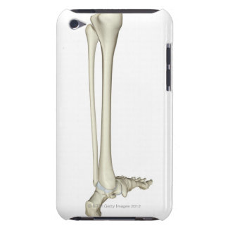 Bones of the Leg 5 Barely There iPod Covers