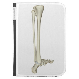 Bones of the Leg 5 Case For Kindle
