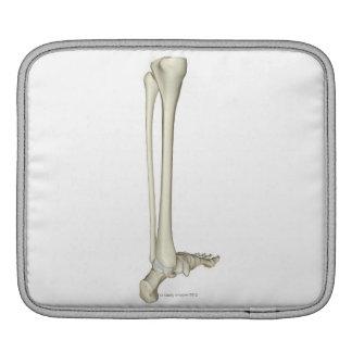 Bones of the Leg 5 iPad Sleeve