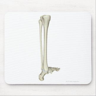 Bones of the Leg 5 Mouse Pad