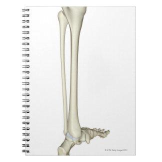 Bones of the Leg 5 Spiral Notebook