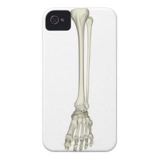 Bones of the Leg iPhone 4 Cover