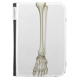 Bones of the Leg Kindle Keyboard Covers