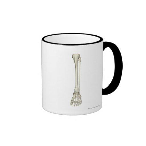 Bones of the Leg Coffee Mug