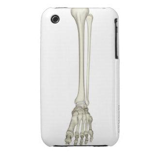 Bones of the Leg iPhone 3 Cover