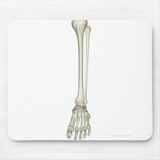 Bones of the Leg Mouse Pad