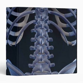 Bones of the Lower Back 2 Binder