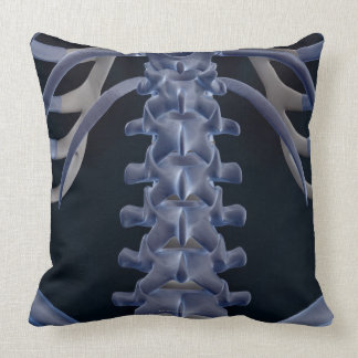 Bones of the Lower Back 2 Pillow