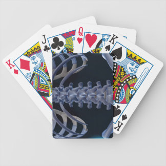 Bones of the Lower Back 2 Deck Of Cards