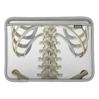 Bones of the Lower Back 4 Sleeves For MacBook Air