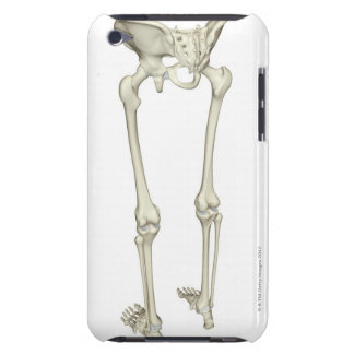 Bones of the Lower Body 5 Barely There iPod Case