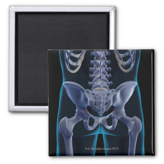 Bones of the Lower Body 6 2 Inch Square Magnet