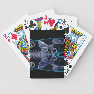 Bones of the Lower Body 6 Playing Cards