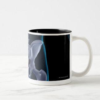 Bones of the Lower Body 6 Two-Tone Coffee Mug