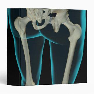 Bones of the Lower Limb 2 3 Ring Binder