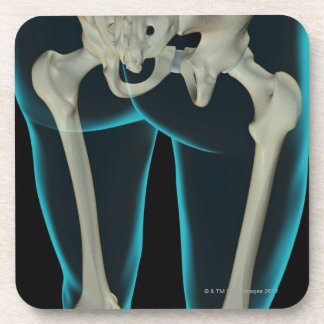 Bones of the Lower Limb 2 Drink Coaster