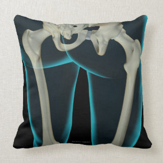Bones of the Lower Limb 2 Pillows