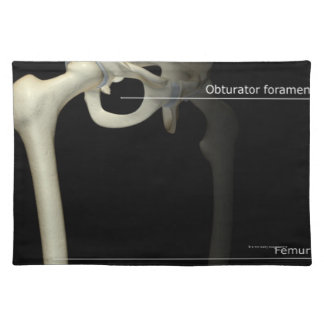 Bones of the Lower Limb Cloth Placemat