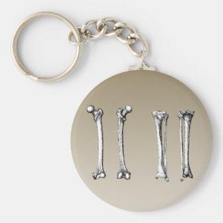 Bones of the lower limbs keychain