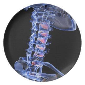 Bones of the Neck 3 Melamine Plate