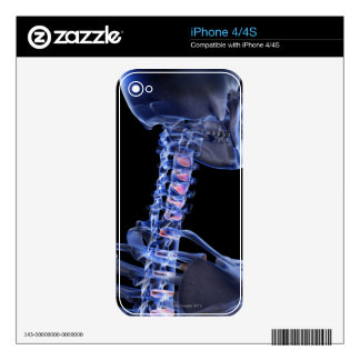 Bones of the Neck 3 Skin For iPhone 4