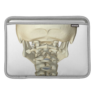 Bones of the Neck 4 Sleeve For MacBook Air