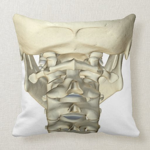 Bones of the Neck 4 Pillow