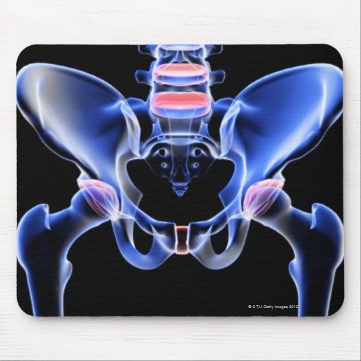 Bones of the Pelvis 3 Mouse Pad