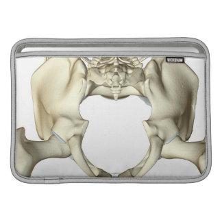 Bones of the Pelvis 4 MacBook Air Sleeve