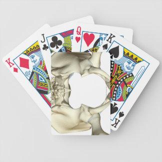 Bones of the Pelvis 4 Poker Deck