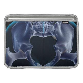 Bones of the Pelvis MacBook Sleeves