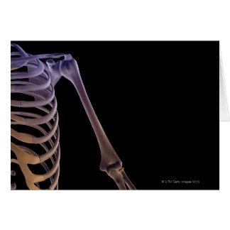Bones of the Shoulder Greeting Cards