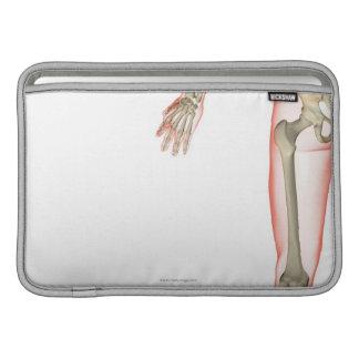 Bones of the Thigh MacBook Air Sleeves
