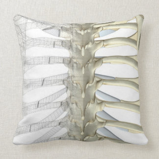 Bones of the Thoracic Vertebrae 2 Pillow