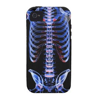 Bones of the Trunk 2 iPhone 4 Covers
