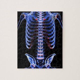 Bones of the Trunk 2 Jigsaw Puzzle
