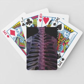 Bones of the Upper Body 7 Poker Deck