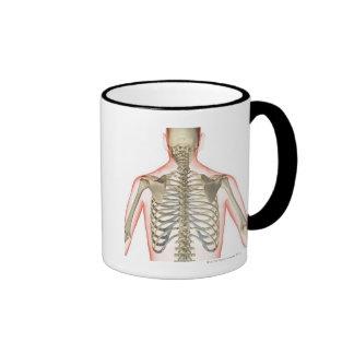Bones of the Upper Body Ringer Mug