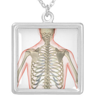 Bones of the Upper Body Silver Plated Necklace