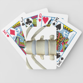 Bones of the Vertebral Column Bicycle Playing Cards