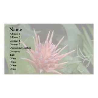 Boney Flowers Business Cards